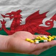 Stock Photo: Holding pills in hand in front of wales national flag