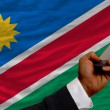 Cell phone in front  national flag of namibia - Stock Photo