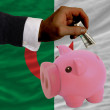 Dollar into piggy rich bank and  national flag of algeria - Foto Stock