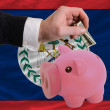 Dollar into piggy rich bank and  national flag of belize - Zdjęcie stockowe