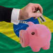 Dollar into piggy rich bank and  national flag of brazil — Stock Photo