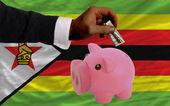 Dolar w piggy bank bogaty i flagi narodowej zimbabwe — Zdjęcie stockowe