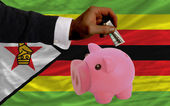 Dollar into piggy rich bank and national flag of zimbabwe — Stock Photo