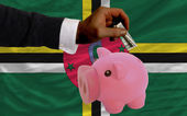 Dollar into piggy rich bank and national flag of dominica — Stockfoto