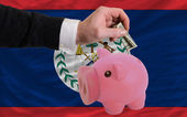 Dollar into piggy rich bank and national flag of belize — Stock Photo