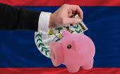 Dollar till rika piggy bank och nationella flagga belize — Stockfoto