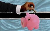 Dollar in reich sparschwein und nationale flagge botsuanas — Stockfoto