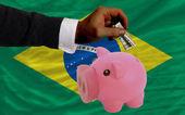 Dolar do prasátko bohaté banky a státní vlajka v brazílii — Stock fotografie