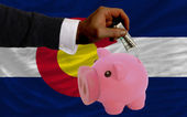 Dollar into piggy rich bank and flag of american state of color — Stock Photo