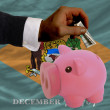 Dollar into piggy rich bank and  flag of american state of delaw - Zdjcie stockowe