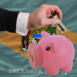 Dollar into piggy rich bank and  flag of american state of delaw - Stockfoto
