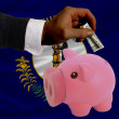 Dollar into piggy rich bank and  flag of american state of kentu — Stock Photo