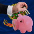 Dollar into piggy rich bank and  flag of american state of idaho — ストック写真