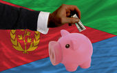 Dollar in piggy rijke bank en de nationale vlag van eritrea — Stockfoto