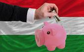 Dolar w piggy bank bogaty i flagi narodowej węgier — Zdjęcie stockowe