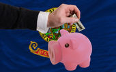 Dollar into piggy rich bank and flag of american state of idaho — Stock Photo