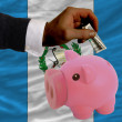 Dollar into piggy rich bank and  national flag of guatemala - Foto de Stock