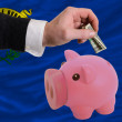 Dollar into piggy rich bank and  flag of american state of nevad - Stockfoto