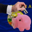 Dollar into piggy rich bank and  flag of american state of monta - Stockfoto