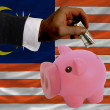 Dollar into piggy rich bank and  national flag of malaysia - Stok fotoraf