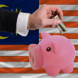 Dollar into piggy rich bank and  national flag of malaysia - 图库照片