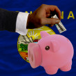 Dollar into piggy rich bank and  flag of american state of monta - Stok fotoraf