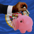 Dollar into piggy rich bank and  flag of american state of minne - 