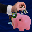 Dollar into piggy rich bank and  flag of american state of maine - 