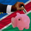 Dollar into piggy rich bank and  national flag of namibia - Foto de Stock