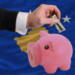 Dollar into piggy rich bank and  national flag of  of kosovo - Stock Photo