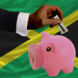 Dollar into piggy rich bank and  national flag of jamaica - Zdjęcie stockowe