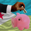 Dollar into piggy rich bank and  national flag of  of djibuti - Stok fotoğraf