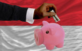 Dollar in reich sparschwein und nationalflagge indonesiens — Stockfoto