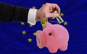 Dollar in reich sparschwein und flagge des amerikanischen bundesstaat von indien — Stockfoto
