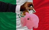 Dollar into piggy rich bank and national flag of mexico — 图库照片