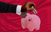Dólar em piggy bank rico e bandeira nacional de marrocos — Foto Stock