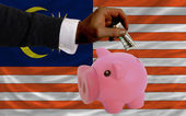 Dollar into piggy rich bank and national flag of malaysia — 图库照片