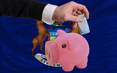 доллар в копилка богатые банком и флагом американского государства мити — Стоковое фото