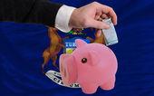 Dollar in piggy rijke bank en vlag van amerikaanse staat van michi — Stockfoto