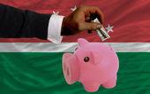 Dólar em piggy bank rico e bandeira nacional do magrebe — Foto Stock