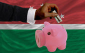 Dollar into piggy rich bank and national flag of of maghreb — Stock Photo