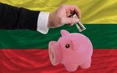 Dollar in reich sparschwein und nationalflagge litauens — Stockfoto