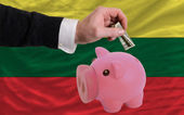 Dollar into piggy rich bank and national flag of lithuania — Stock fotografie