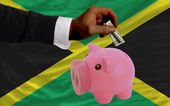 Dollar into piggy rich bank and national flag of jamaica — Stock Photo
