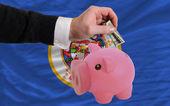 Dolar w piggy bank bogaty i flagi państw amerykańskich minne — Zdjęcie stockowe