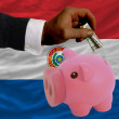 Dollar into piggy rich bank and  national flag of paraguay - Photo