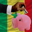 Dollar into piggy rich bank and  national flag of senegal - Foto Stock