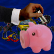 Dollar into piggy rich bank and  flag of american state of penns - Foto de Stock
