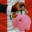 Dollar into piggy rich bank and  national flag of peru - 图库照片