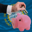Dollar into piggy rich bank and  flag of american state of south — Stock Photo